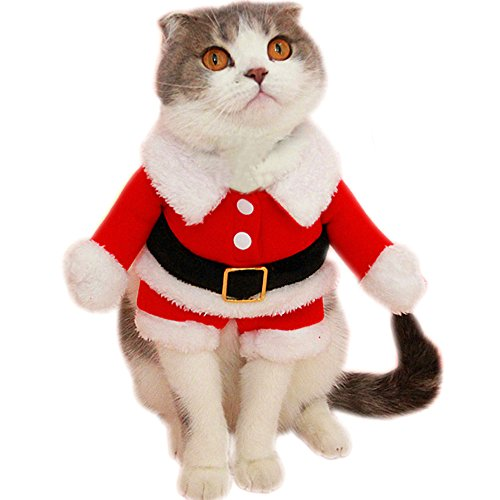 f33cb8936bb97 A unique pet santa outfit to have your pet get as much attention as you at  parties or holiday occasions. Perfect for christmas
